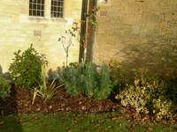 Friary_winter_tidy_004_2
